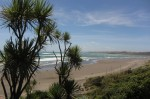 Raglan New Year