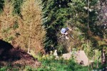 AB Trails Session Herbst
